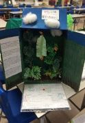 Humanities-Projects-Y64a