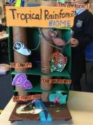 Humanities-Projects-6
